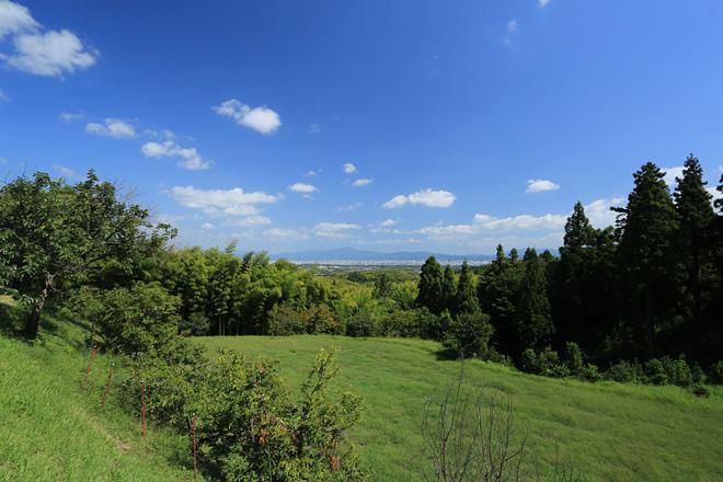 会場から見る京都市の眺め
